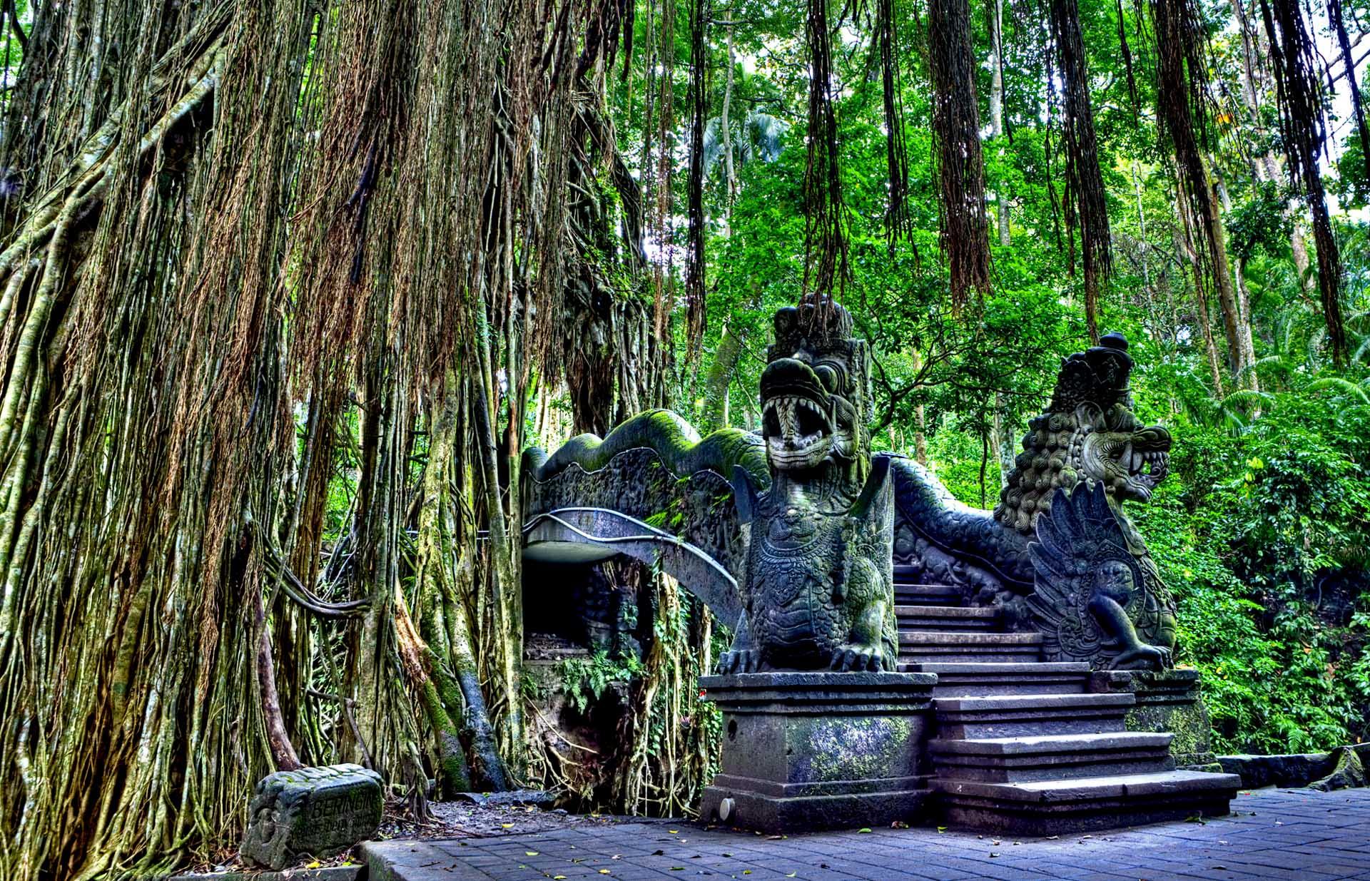 Ubud-Monkey-Forest-Bali